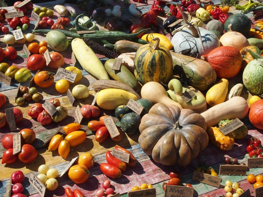 site de vente agricole
